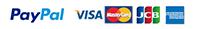 PayPal VISA Mastercard JCB American express